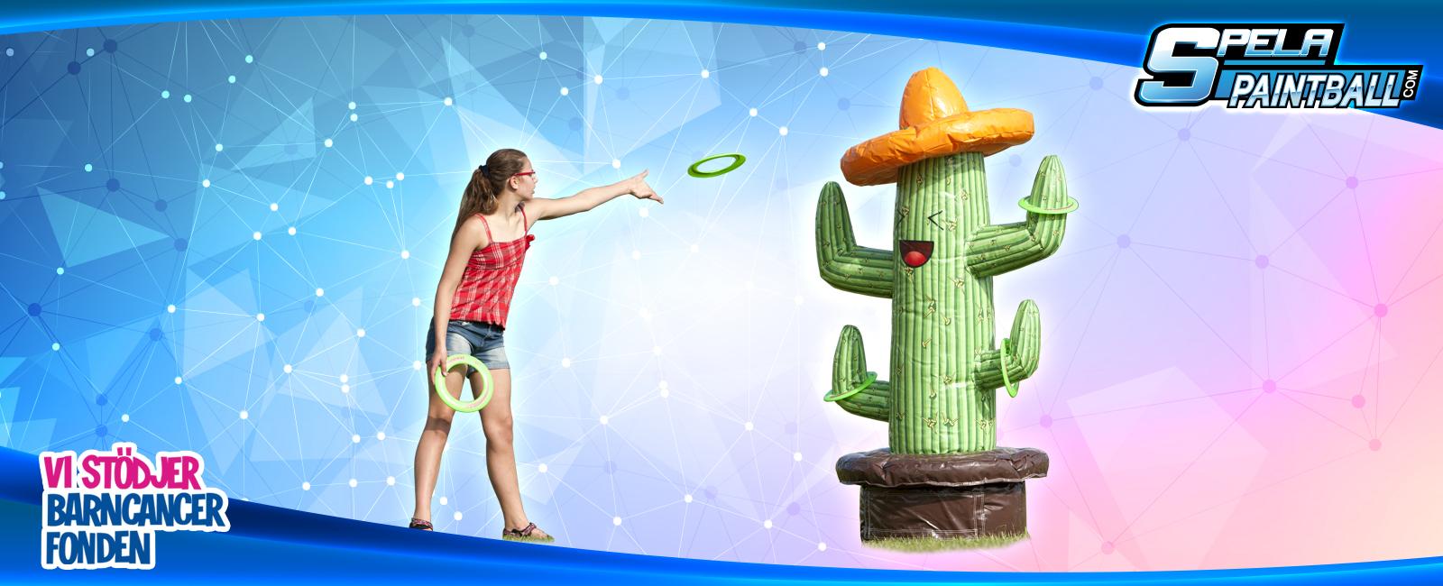 Hyr Kaktus Ringkastning